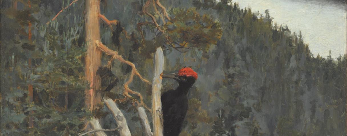 (en 1894), Gallen-Kallela, Akseli