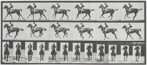 Eadweard Muybridge-Cheval au galop