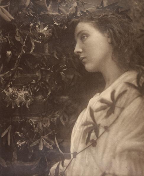 Julia Margaret Cameron-Maud