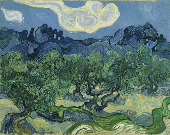 Vincent van Gogh-Les Oliviers