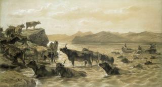 Boeufs traversant un lac devant Ballachulish (Ecosse), Bonheur Rosa (dit), Bonheur Marie Rosalie (1822-1899) peintre,