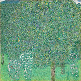 Rosiers sous les arbres, Klimt, Gustav